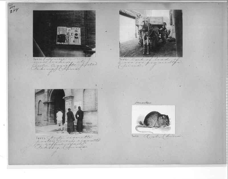 Mission Photograph Album - China #9 page 0244
