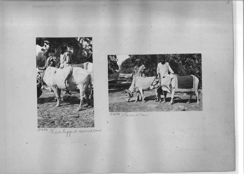Mission Photograph Album - India #03 page_0005