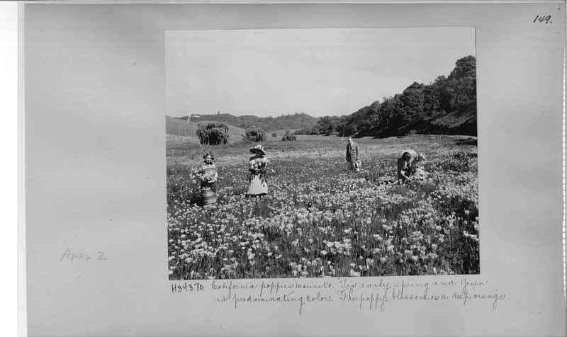 Mission Photograph Album - America #2 page 0149