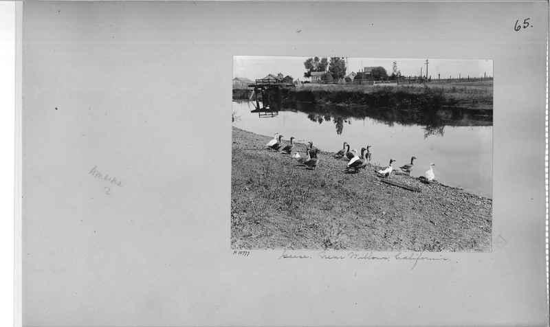 Mission Photograph Album - America #2 page 0065