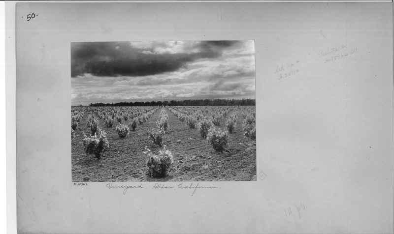 Mission Photograph Album - America #2 page 0050