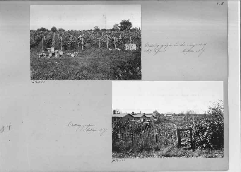 Mission Photograph Album - Rural #04 Page_0165