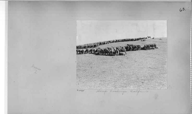 Mission Photograph Album - America #2 page 0063
