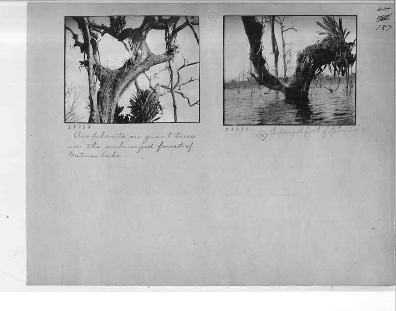 Mission Photograph Album - Panama #1 page  0187