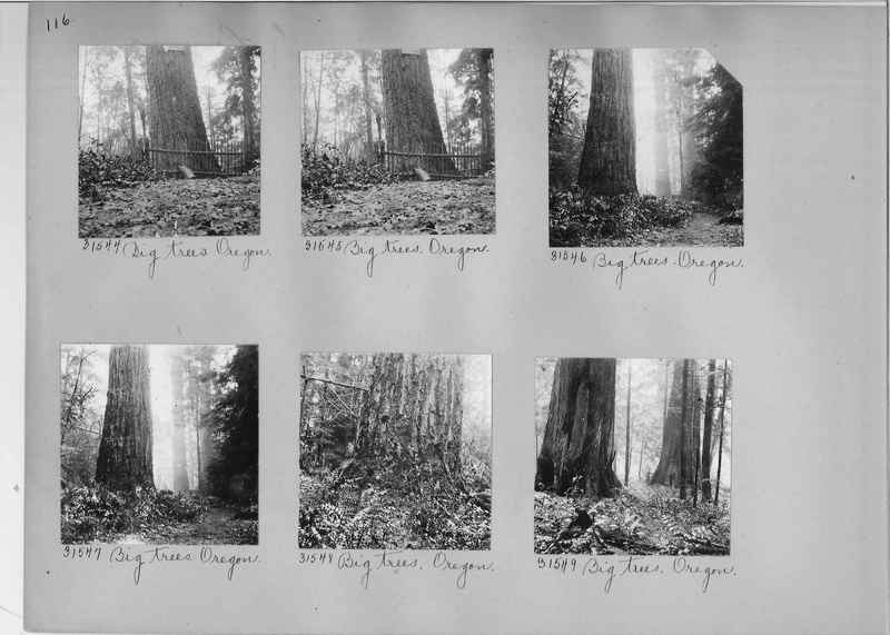 Mission Photograph Album - America #1 page 0116