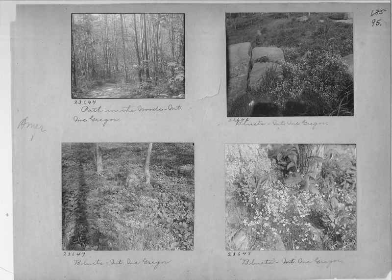 Mission Photograph Album - America #1 page 0095