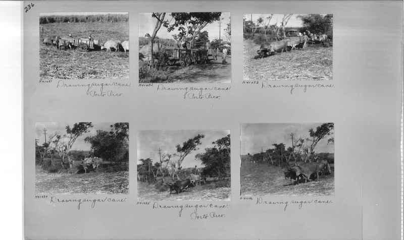 Mission Photograph Album - Puerto Rico #3 page 0236