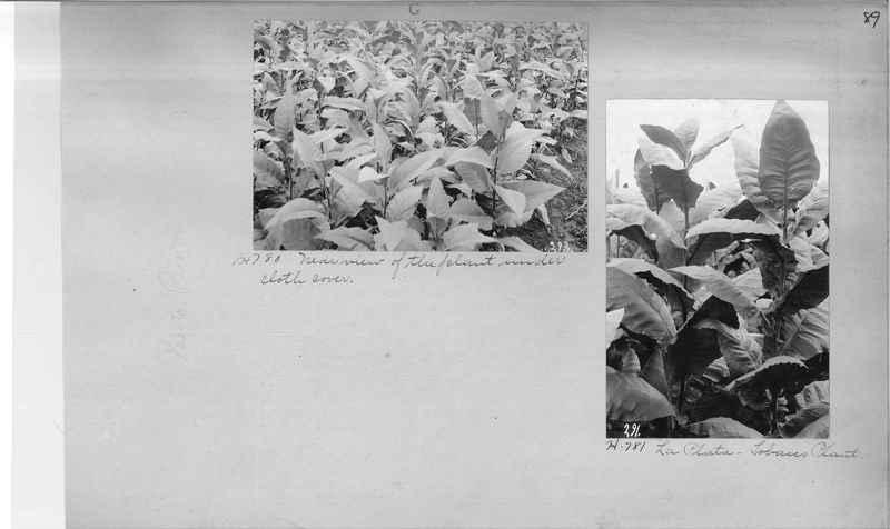 Mission Photograph Album - Puerto Rico #2 page 0089