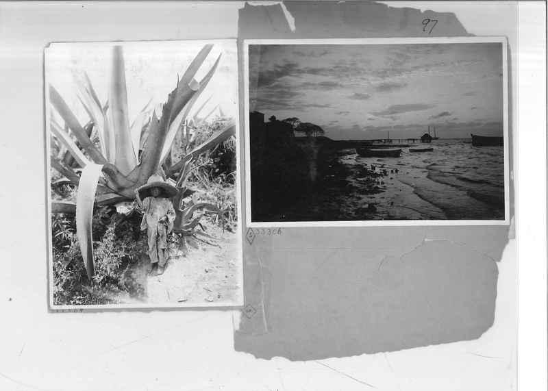 Mission Photograph Album - Mexico - O.P. #01 Page 0097