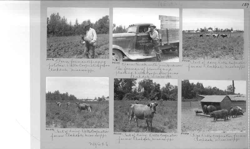 Mission Photograph Album - Negro #6 page 0157