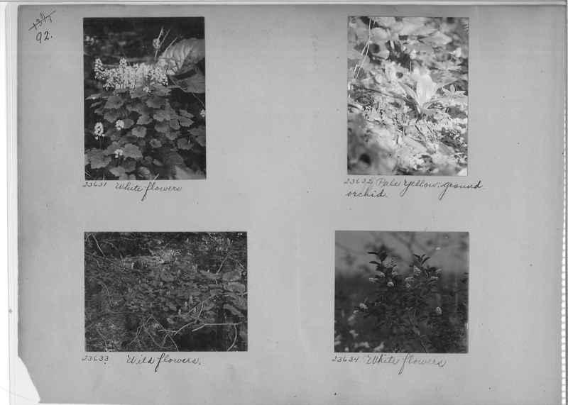 Mission Photograph Album - America #1 page 0092