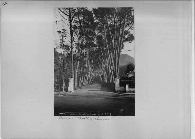 africa-madeira-op-01_0152.jpg