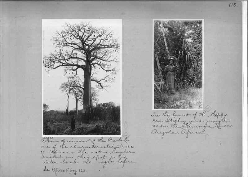 africa-madeira-op-01_0115.jpg